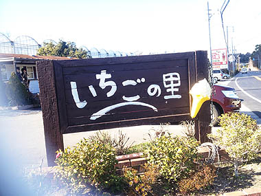 ichi03.jpg
